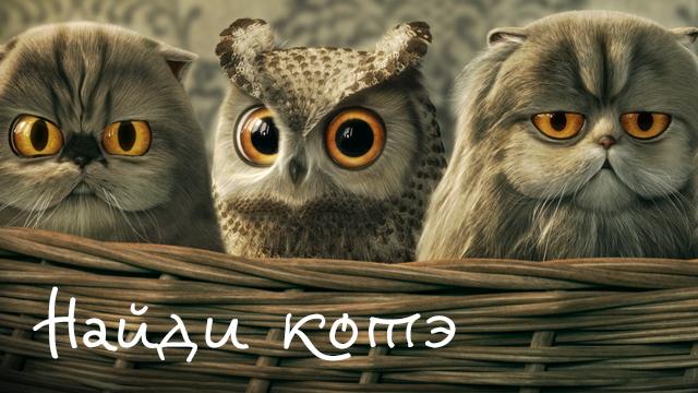 Синяя птица возвращается в Саратов ! - Одноклассники