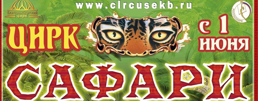 Цирковой шоу проект сафари