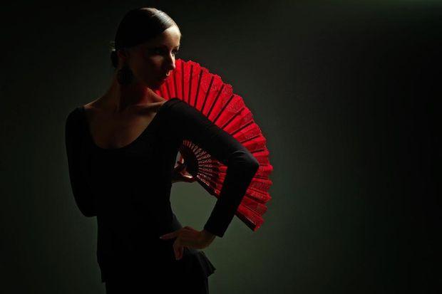 Фламенко. Фото с сайта dmir.ru