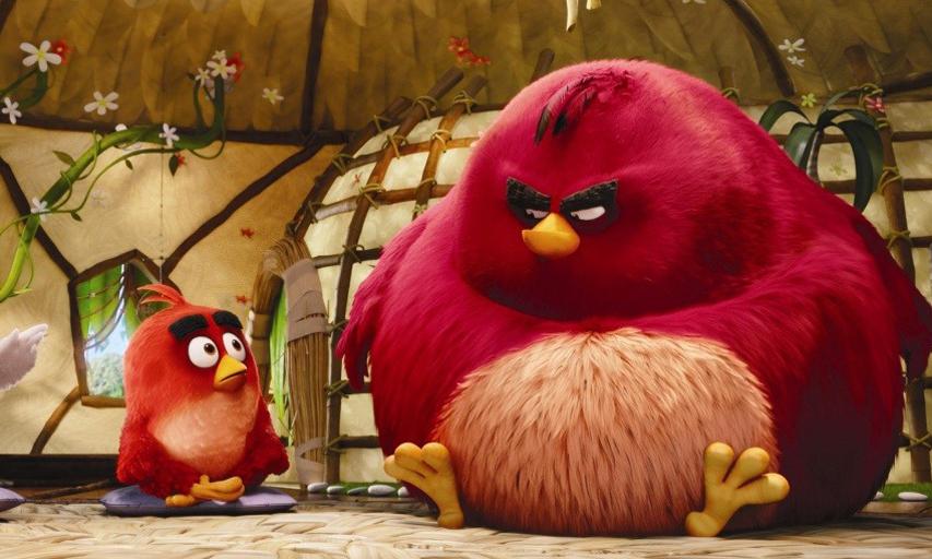 Кадр из фильма «Angry Birds в кино»