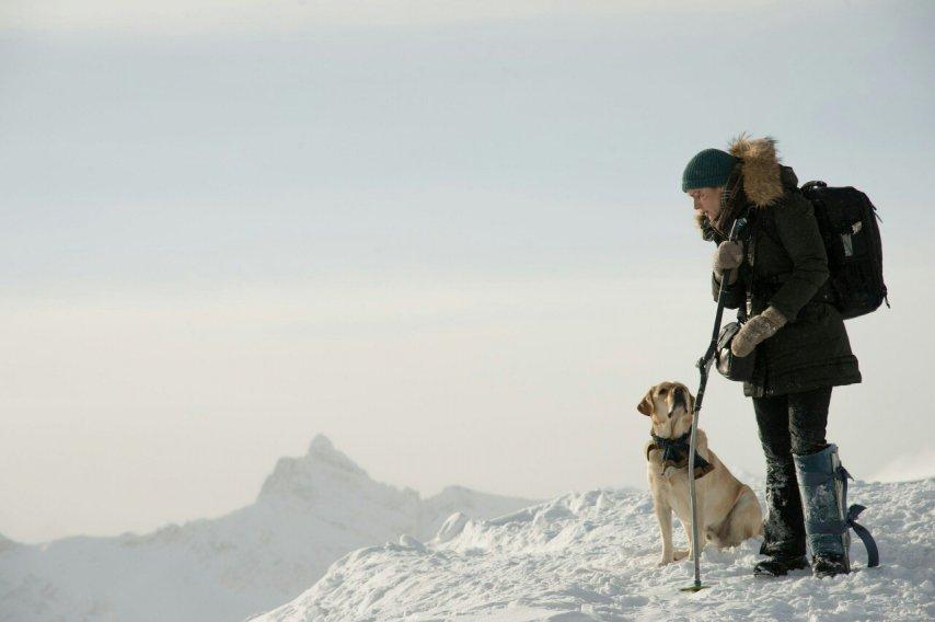Кадр из фильма «Между нами горы»
