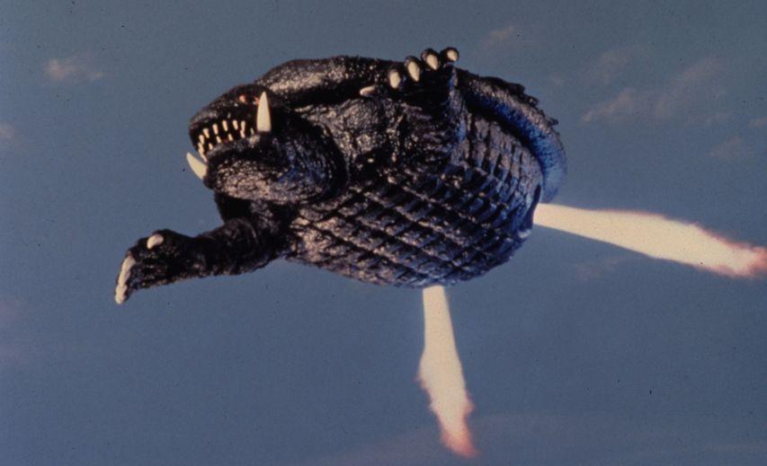 Кадр из фильма «Гамера»