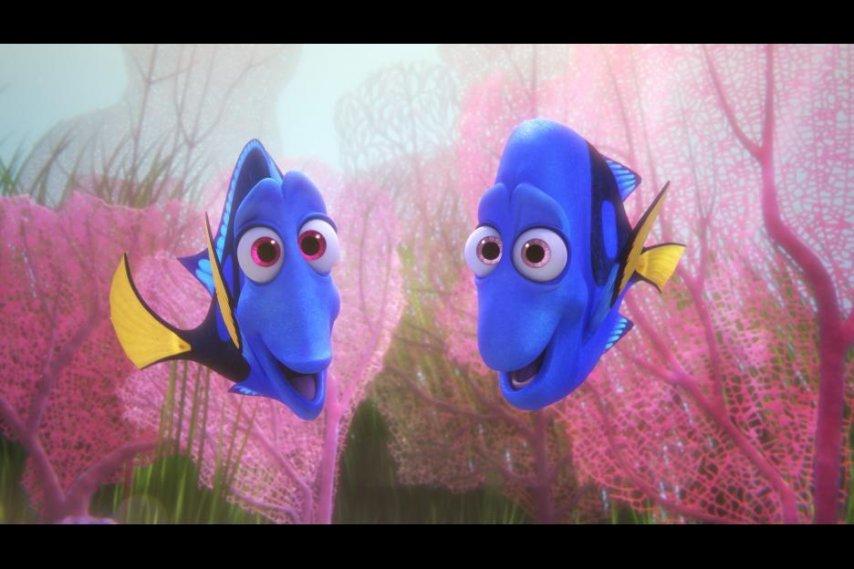 Кадр из фильма «В поисках Дори»