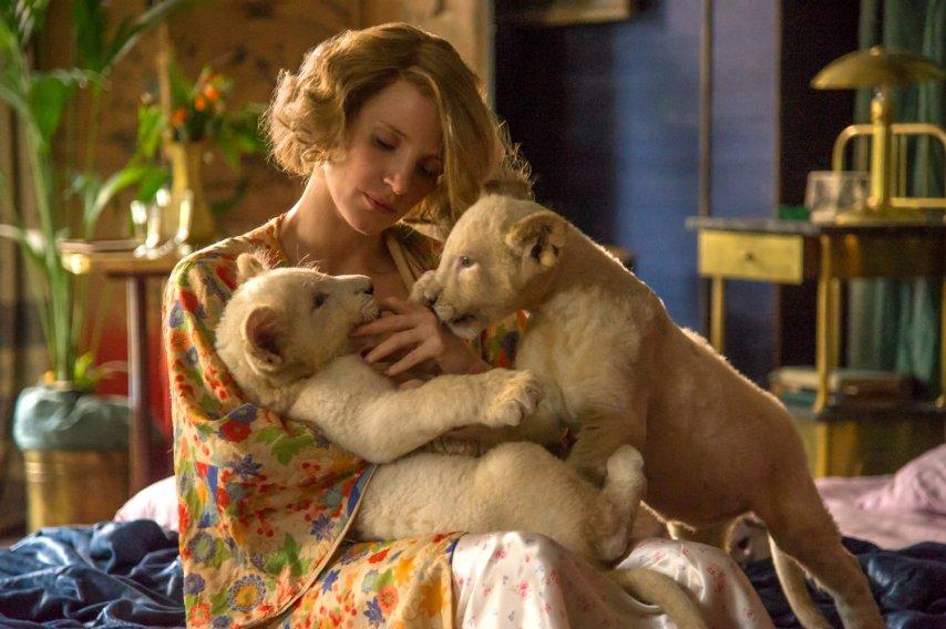 Кадр из фильма «Жена смотрителя зоопарка»