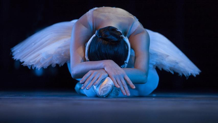 Балет. Фото с сайта wallpaperswide.com