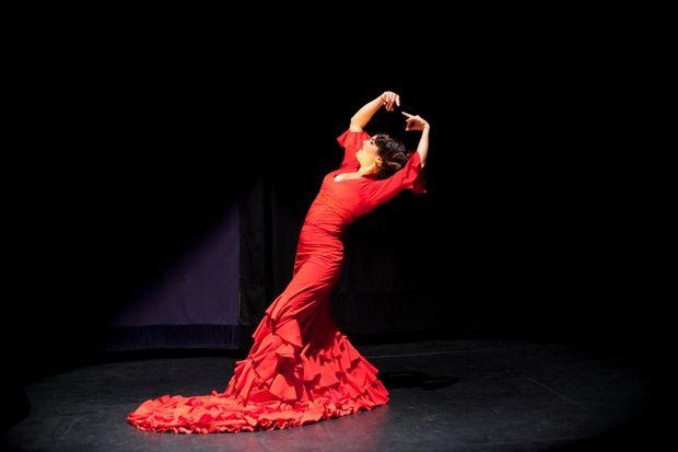 Фламенко. Фото с сайта ptzgovorit.ru