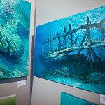 Евразийский фестиваль современного искусства в Екатеринбурге, фото 102