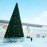 Новогодние ёлки в Екатеринбурге, фото 1