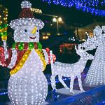Новогодние ёлки в Екатеринбурге, фото 47
