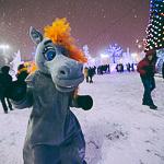 Новогодние ёлки в Екатеринбурге, фото 48
