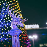 Новогодние ёлки в Екатеринбурге, фото 80