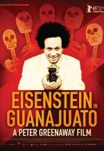 Эйзенштейн в Гуанахуато. Обложка с сайта ipicture.ru