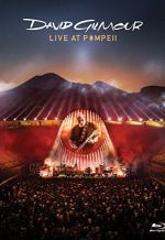 David Gilmour: Live At Pompeii. Обложка с сайта ozon.ru