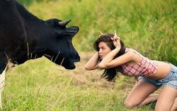 Девушка и корова. Фото с сайта VMersine.com