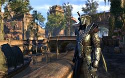Скриншот из игры «The Elder Scrolls Online»