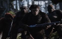 Кадр из фильма Планета обезьян: Война