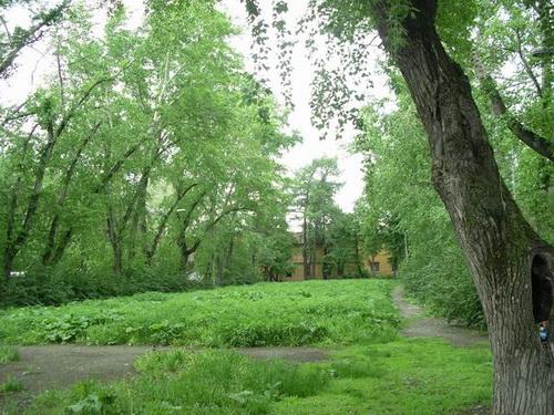 Сад Вайнера