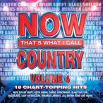 Now That's What I Call Country, Vol. 04—2011