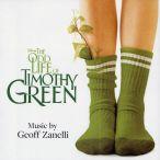 Odd Life Of Timothy Green—2012