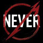 Through The Never—2013