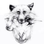 Lone Wolf—2018