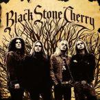 Black Stone Cherry—2006