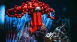Фото со спектакля Сказка о золотом петушке предоставлено организаторами