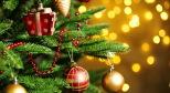 Новогоднее фото с сайта baikal-olkhon.ru