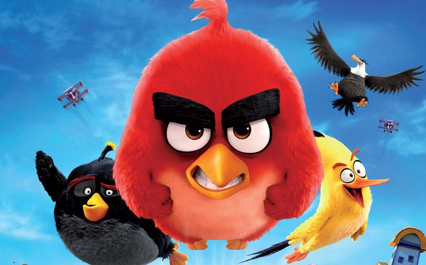 Кадр из фильма «Angry Birds»
