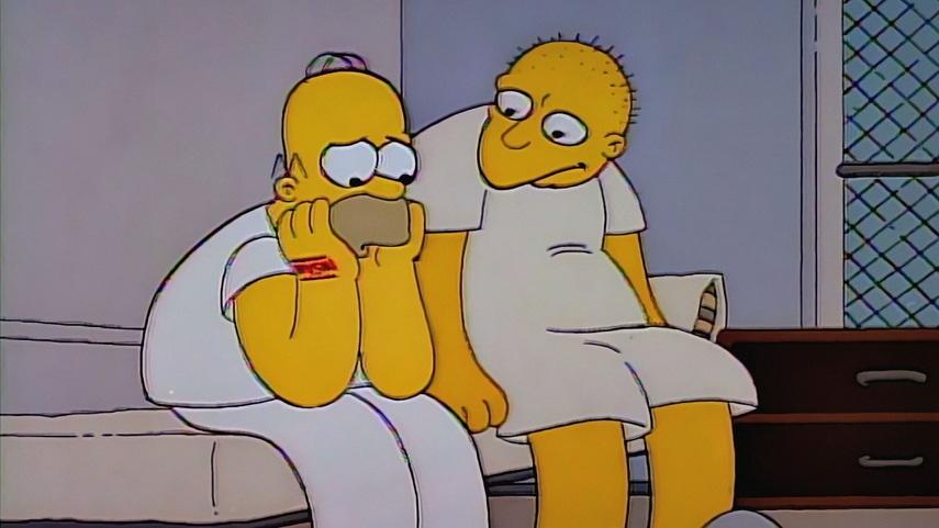Кадр из того самого эпизода «Симпсонов»