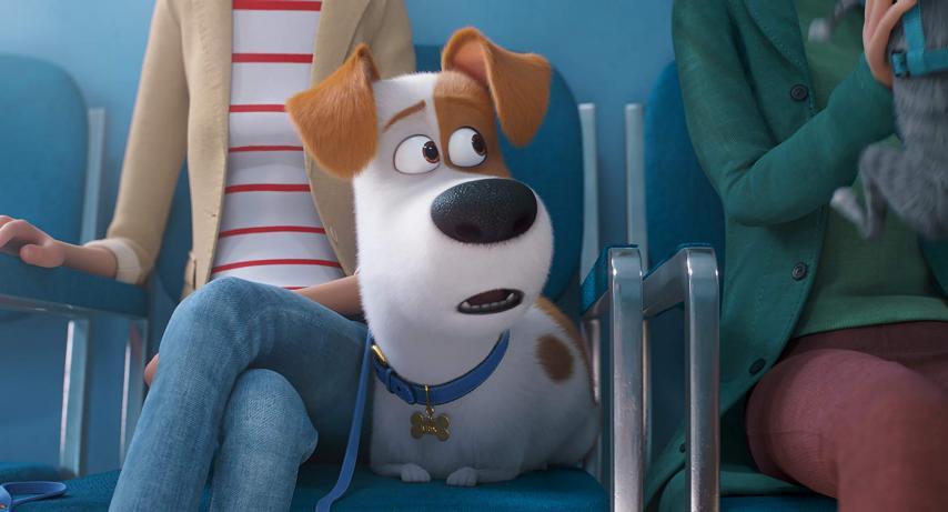 Кадр из фильма «Тайная жизнь домашних животных 2»