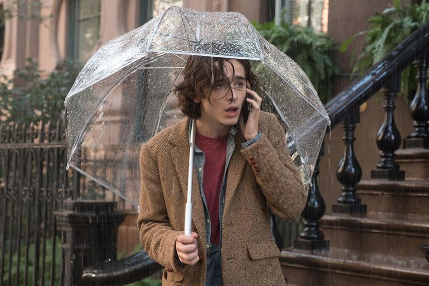 Кадр из фильма «Дождливый день в Нью-Йорке»