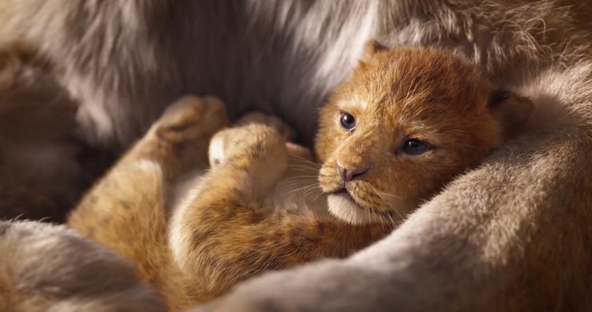 Кадр из фильма «Король лев»