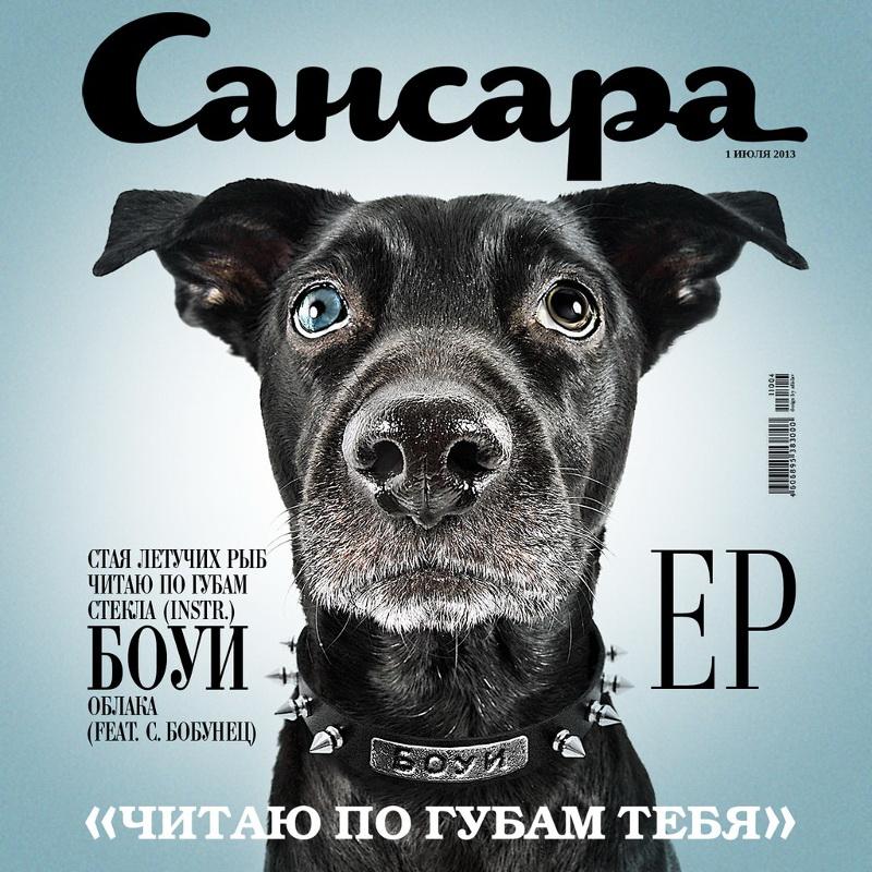 Обложка альбома «Боуи»