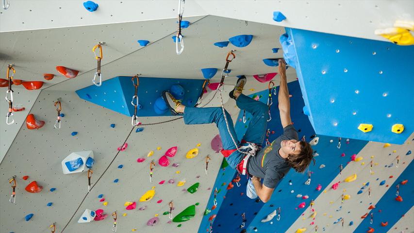 Скалолаз. Фото с сайта walltopia.com