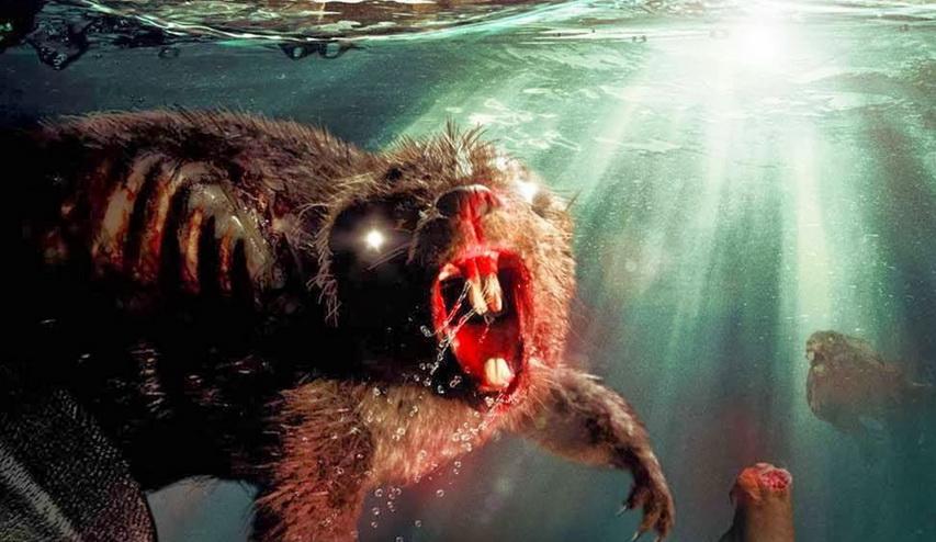 Кадр из фильма «Зомби-бобры»