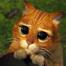 Кадр из мультфильма «Шрек 2»