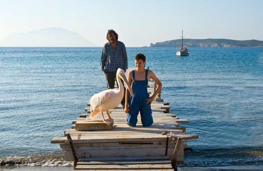 Кадр из фильма «Пеликан»