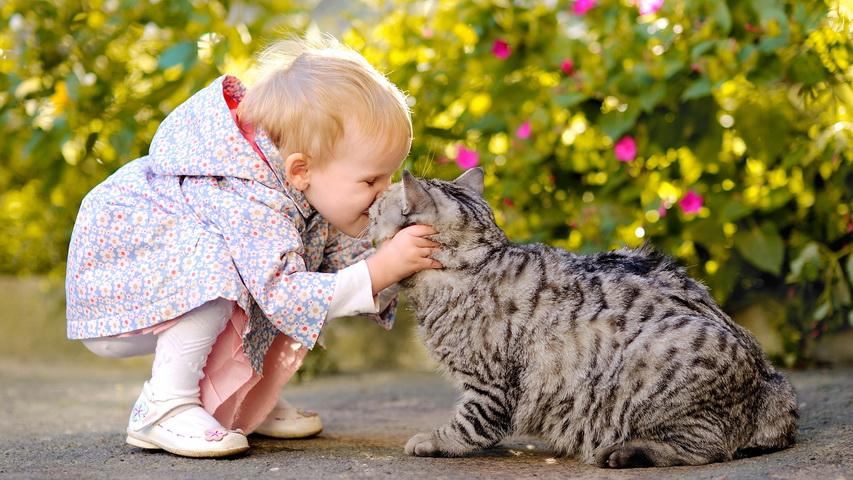 Ребенок с котенком. Фото с сайта desktopwallpapers.org.ua