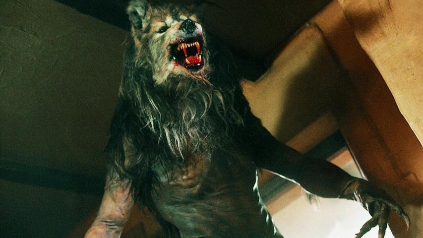 Кадр из фильма «Псы-воины»