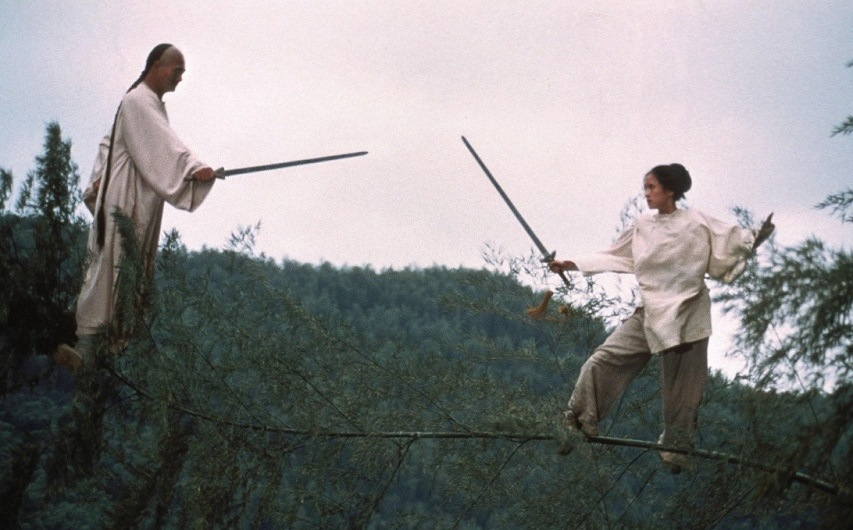 Кадр из фильма «Крадущийся тигр, затаившийся дракон»