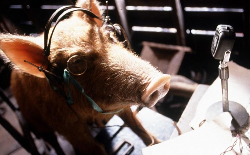 Кадр из фильма «Скотный двор»