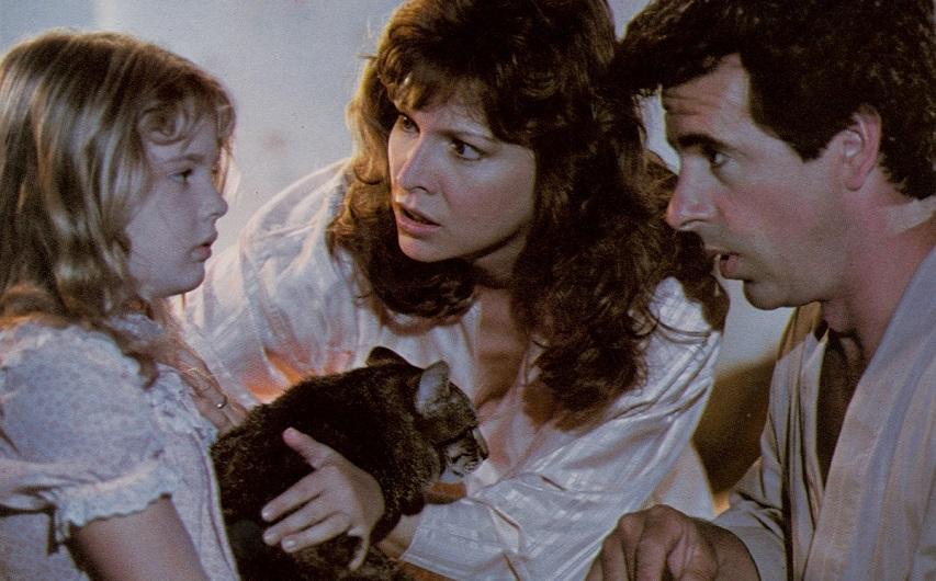 Кадр из фильма «Кошачий глаз»