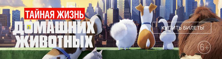 «Тайная жизнь домашних животных» — купи билеты прямо сейчас!