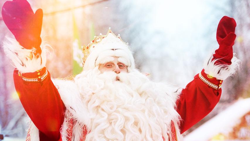 Лучшие развлечения для все семьи: новогоднее шоу в цирке, экскурсия в усадьбу Деда Мороза и вечер просмотров мультфильмов. Коллаж © Weburg