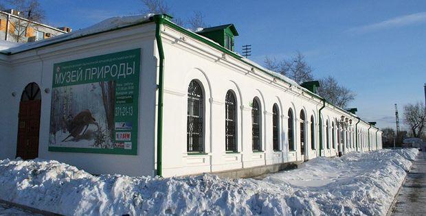 Музей природы Урала. Фото с сайта kidsreview.ru