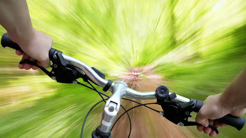Велопрогулка. Фото с сайта martova-laguna.com.ua