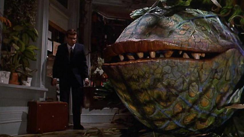 Кадр из фильма «Магазинчик ужасов»