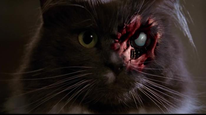 Кадр из сериала «Ночные кошмары и фантастические видения»