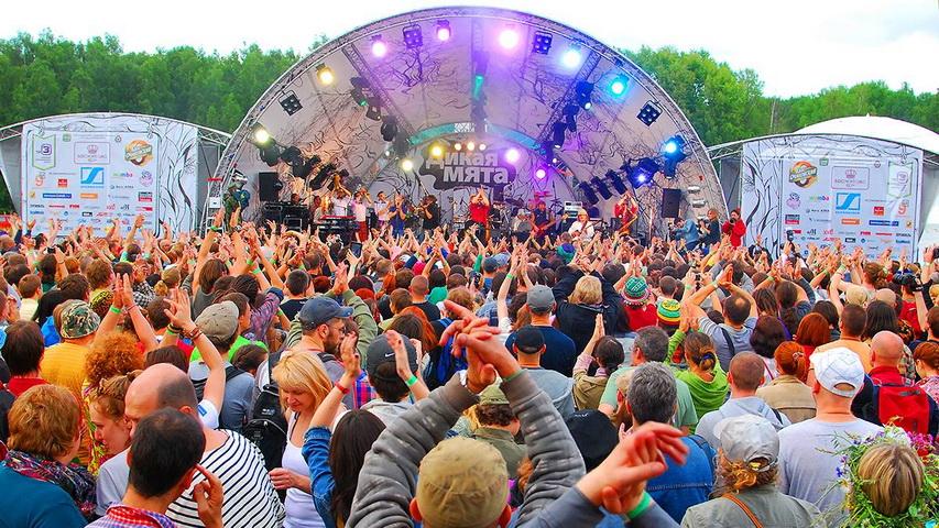 Фестиваль «Дикая мята». Фото с сайта kudago.com